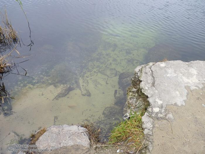 Днепропетровск красный камень фото