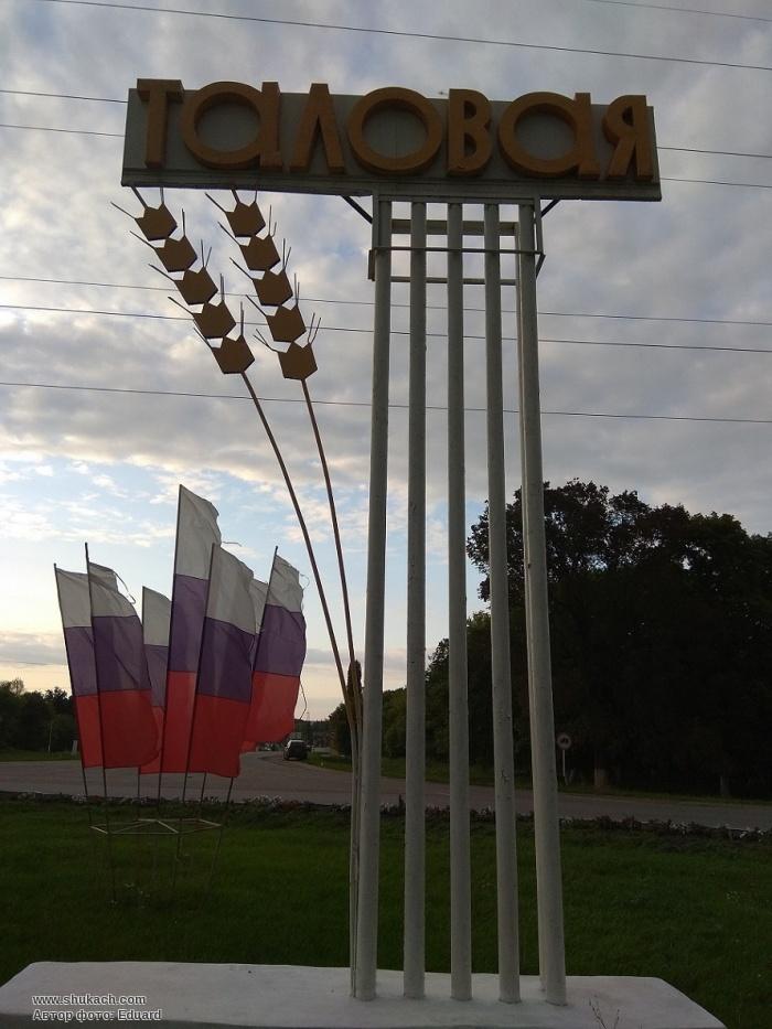 Элеватор таловая воронежская область транспортер салонный фильтр замена