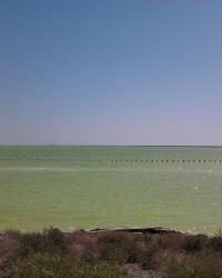 Солепромысел возле Гнилого моря