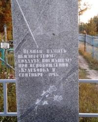 Могила неизвестного солдата, с. Кулебовка