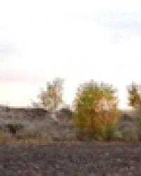 Курганы на северо-западной окраине г. Подгородное