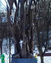 Памятник Богдану-Игорю Антонычу, г. Львов
