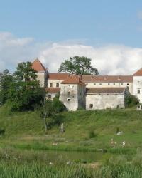 Свірзький замок