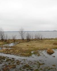Озеро Люцимир у смт. Шацьк
