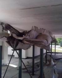 Скелет синього кита, в м. Київ