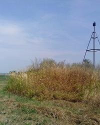 Триангуляційний пункт, висота 183,1. с. Германівка