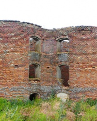 Силосные башни (19 век, двойные) Александеркрона в с. Грушевка