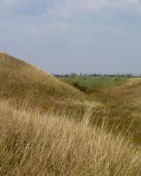 Ефремовская (Троицкая) крепость