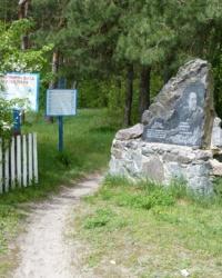 Ковпаковский лесопарк