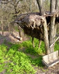 Кормушка для животных в лесу возле с.Каневское (Запорожский р-н)