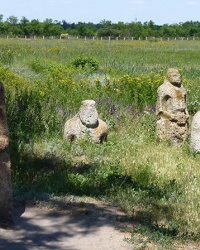 Половецкие Бабы в заповеднике «Каменная могила»