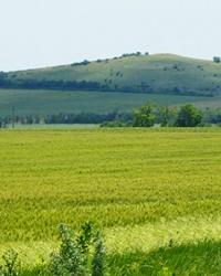 Гора Корсак (северная №1). Корсак-Могила