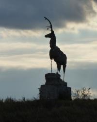 Курган (Высота 59.7) возле с.Отрадокаменка (Бериславский р-н)