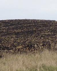 Курган (Высота 100.8) возле с Александровка (Зачепиловский р-н)
