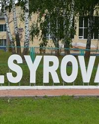 Арт-символ «I love V.SYROVATKA»