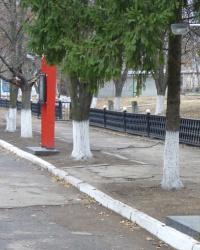Аллея памяти воинам интернационалистам в пгт.Новгородка