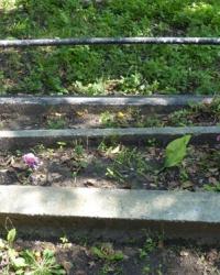 Братская могила в с.Николаевка (Верхнеднепровский р-н)
