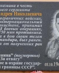 Мемориальная доска Рзянкину А.Н (воин-интернационалист) в г.Кривой Рог