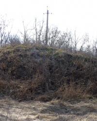 Курган (2м) возле с.Покровка