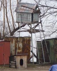 Голубятня в Днепропетровске. Фото - квест