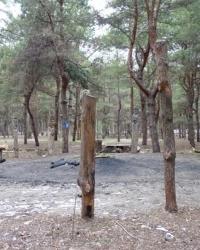 «Поляна Сказок» во Фрунзенском лесу г. Днепропетровск