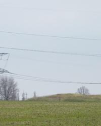 Курган Могила-Дубовая 3м (Высота 155.7) в с.Гомельское