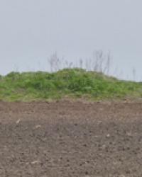 Курган Могила-Близнецы возле с.Лобойковка (Петриковский р-н)
