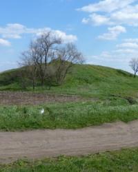 Курган Могила-Рябая 8м (Высота 155.2) возле с.Василевка