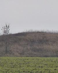 Курган Могила-Чумацкая (6м) возле с.Саевка