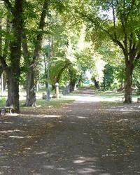 Парк імені Шевченка у м. Чигирин