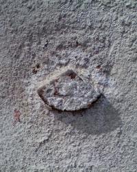 Репер под штукатуркой на ул. Куриловская, 41