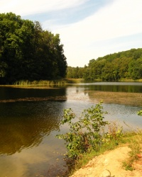 Озеро Вильшанка (Краснокутский район, село Чернещина)