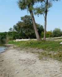 «Золотой пляж» в г. Люботин