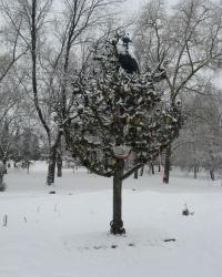"""""""Дерево Счастья"""" в Снежном"""