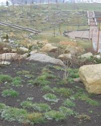 Сад камней в Донецке