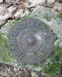 Репер (631), Голосеевский лес