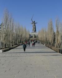 Аллея тополей мемориального комплекса «Героям Сталинградской битвы» на Мамаевом кургане в г.Волгограде