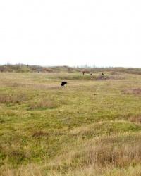 Петровская крепость Украинской укреплённой линии