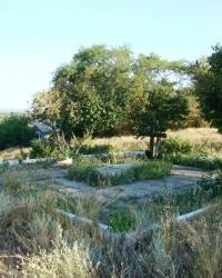 Братская могила воинов и железнодорожников на территории ж/д вокзала Южный