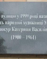 Анатационная доска Е.В.Белокур