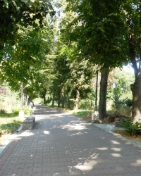 Дендропарк на склонах Днепра в г.Киеве