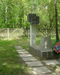 с. Брусилов. Братская могила.