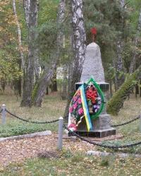 г.Чернигов. Группа братских могил в лесу.