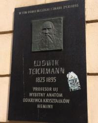 м. Краків. Меморіальна дошка Людвіку Тейхману.