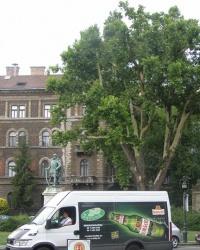 м. Будапешт. Будинок зі сграффіто на площі Кодаі.