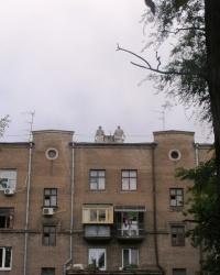 Соцгород: взгляд изнутри