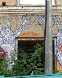 Спрей-арт (граффити) в Каменце-Подольском. Фотоквест