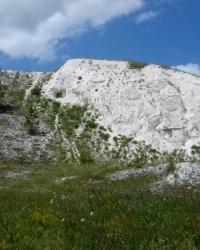 Новомлынск. Меловая скала