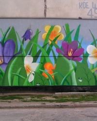Цветы на бетоне