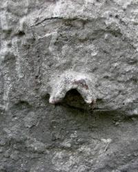 Заштукатуренный репер на ул. Володарского, 40
